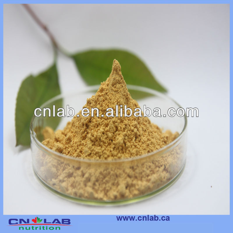 Hot selling fenugreek extract powder 50% saponins