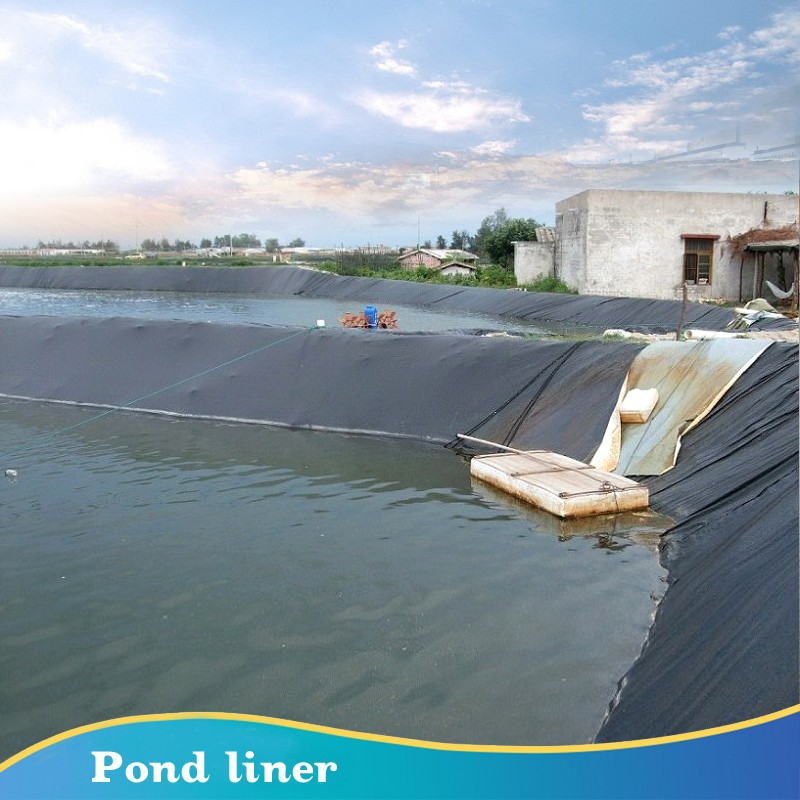 Cost Effective Hdpe Geomembrane Pond Liners For