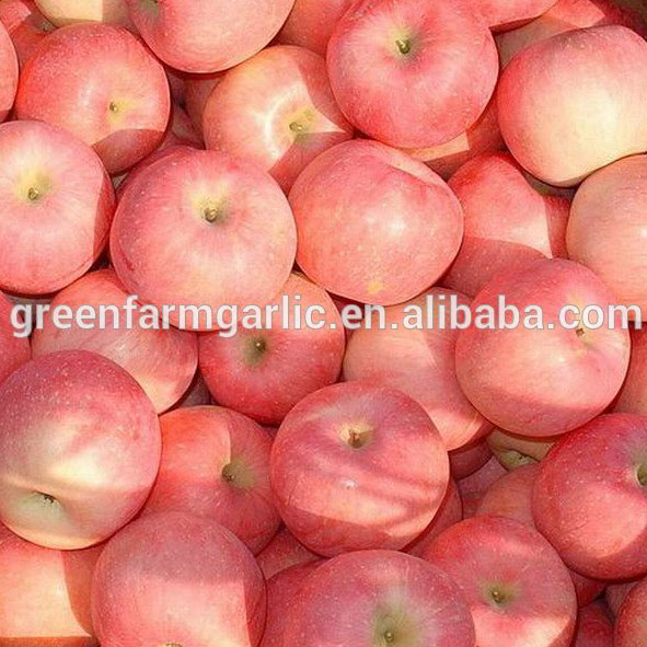 fresh apple chinese apple fruit gala apple