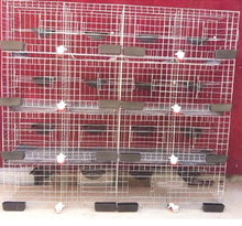 breeding cage with feeding pigeon accessories for sale