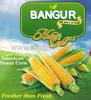Baby Corn , Sweet Corn , Corn on Cobs & Other Frozen Vegetables