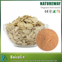 Chinese Skullcap Root Extract (70%~95% Baicalin) CAS No. 21967-41-9 Scutellaria Root Extract