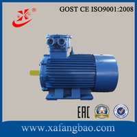 110 kw and 2 Pole Explosion proof motor for mine with cast iron housing