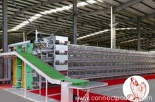 Layer cage system broiler poultry farm equipment