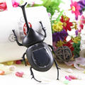 Educational and fun insects beetle solar powered toys