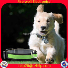 News From China Night Light Pet Training Products Manufacturer