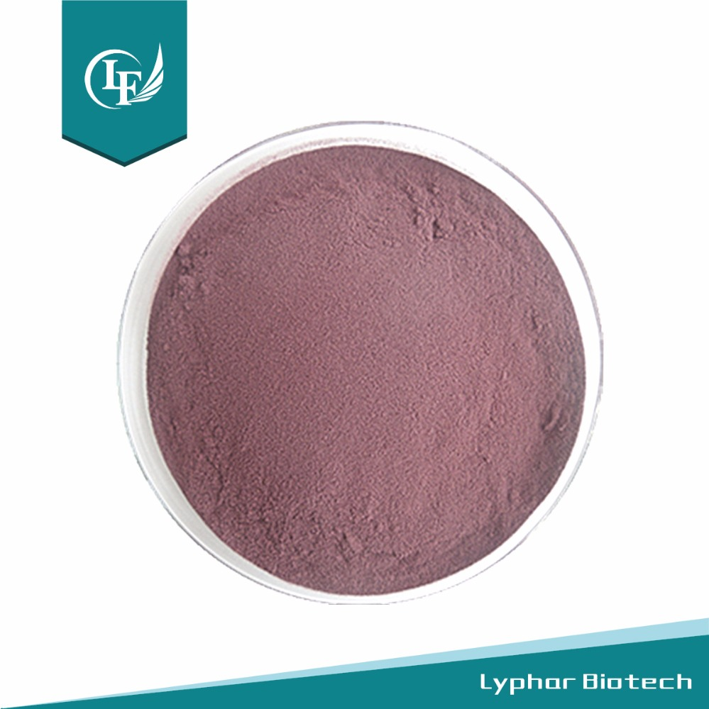 Bulk Stock Blueberry Powder For Sale