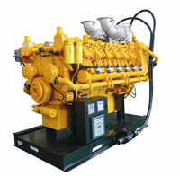 USA Googol Brand 1000kW Gas Engine 1500RPM