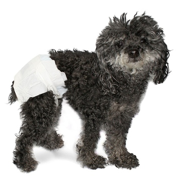 Pet Training Pads disposable dog diapers
