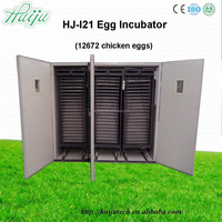 chick incubator/ostrich incubator for sale/heater for incubator