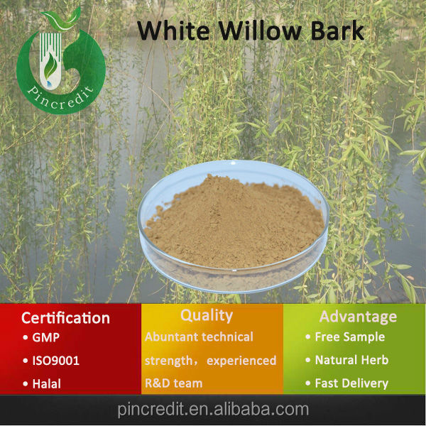 White Willow Bark Extract/White Willow Bark Extract Salicin/White Willow Bark