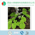 Top Quality Epimedium Extract Icariin 60%