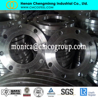 WIDE APPLICATIONS F42 309 STAINLESS STEEL ASME PAD TYPE FLANGE