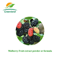 Mulberry Fruit P.E. Extract Powder