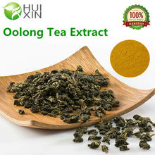 100% Natural Tea Polyphenols Oolong Tea Extract