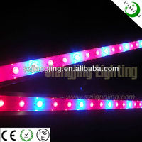 New Design Low price High Power Panel LED Plant Grow Light