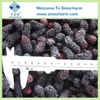 Fruit Product IQF Fresh Mulberry