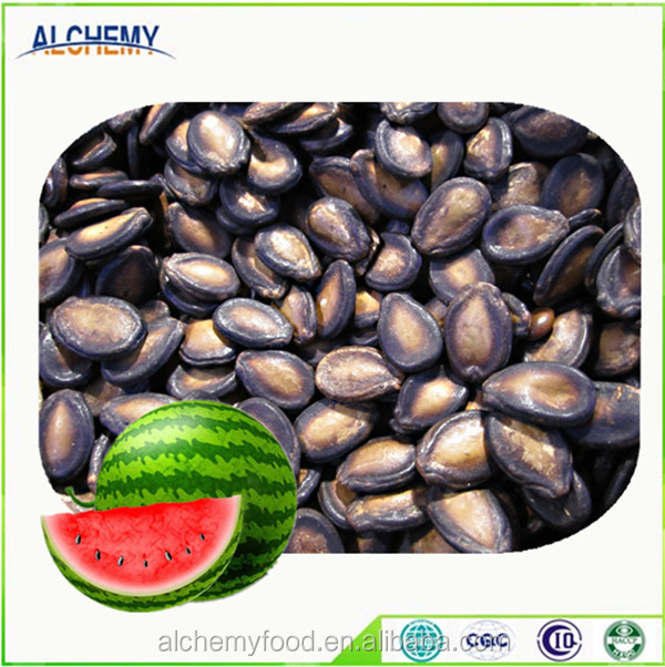 Bulk watermelon seed in Xinjiang China, whole sale, KOSHER,HACCP