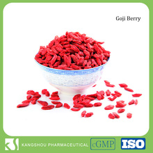China high quality organic bulk dried goji berries