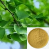 pure natural Ginkgo Biloba Leaf Extract/GMP factory/CP/USP/EP