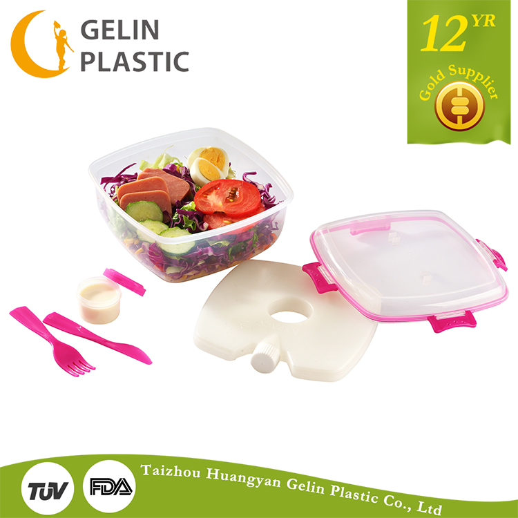 GL9811 With the tableware lunch box rectangular plastic lunch box lunch boxes