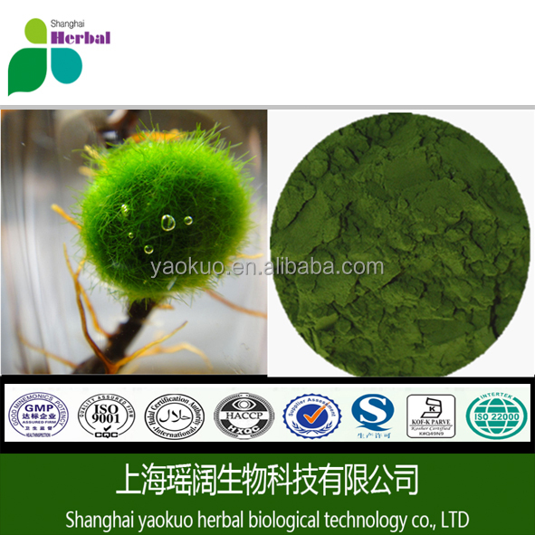 Factory Supply Chlorella Spirulina Tablets , Chlorella Vulgaris Powder