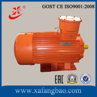 280 kw and 2 pole flameproof three-phase asynchronous motors technical data