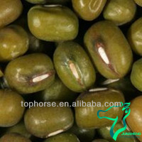 New Crop Green Mung Beans 2012 or Whole Moong Beans Unpolished