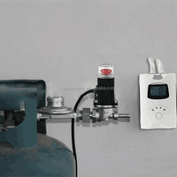 Gas detector with shut-off valve,domestic lpg gas detector for cylinder use and emergency shutoff DN15