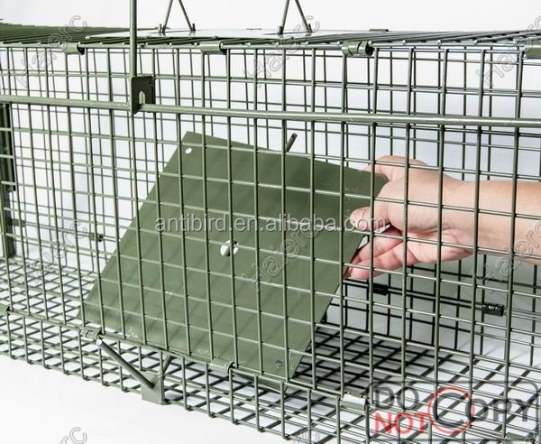 Live Animal cage trap Catch Release Humane Rodent Cage for Rabbits, Stray Cat, Squirrel, Raccoon, Mole, Gopher, Opossum