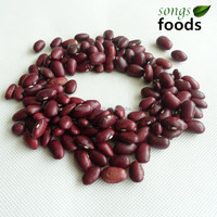 Bigger Size Janpanese Red Kidney Beans with highest quality