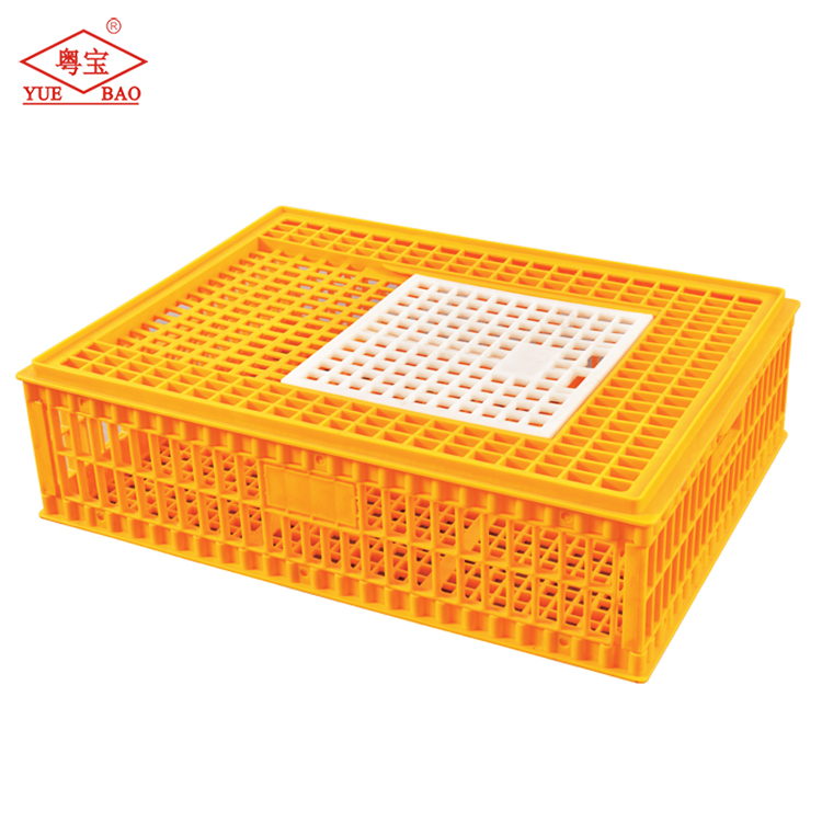 Customized poultry chicken cage, chicken used transport crate, plastic chicken transport
