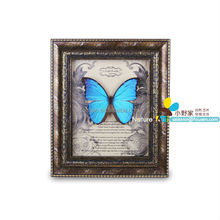 FOUSEN(046) Nature& Art framed Morpho supplier antique home decoration items
