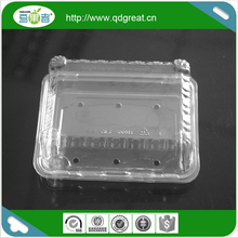 500g Food Pet Disposable Plastic Fruit Container