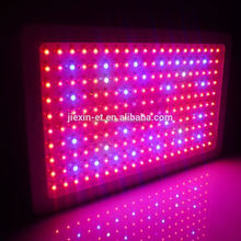 2015 hot sale 8-band led grow light 300w led panel grow light Red Blue full Spectrum 300W LED grow light