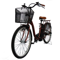 Best 240W Target Japan Electric Bicycle