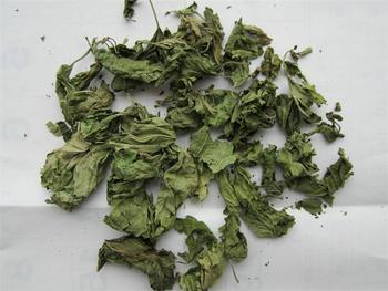 100% Natural mulberry leaf extract (DNJ) powder 1%