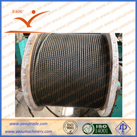 Rotating drilling rig oilfield galvanized steel wire rope 12mm