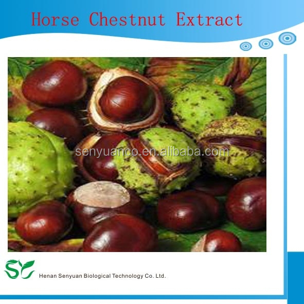Factory Supply Best Quality Horse Chestnut extract Aescin