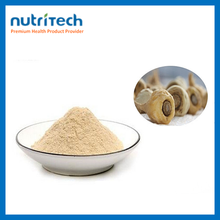 GMP Nutritional High Quality Maca Herb