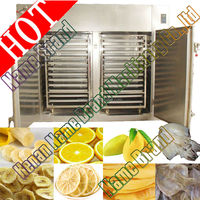 Hot selling!! industrial dryer oven for fruit and vegetable