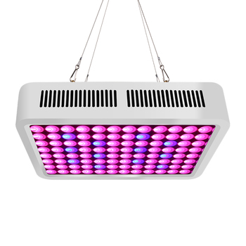High Efficacy 300W Greenhouse LED Grow Lights with Competitive Cost