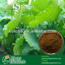 Heath Food Supplement Nuciferine 2% lotus leaf extract Powder