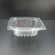 FDA Standard PET disposable Plastic salad container