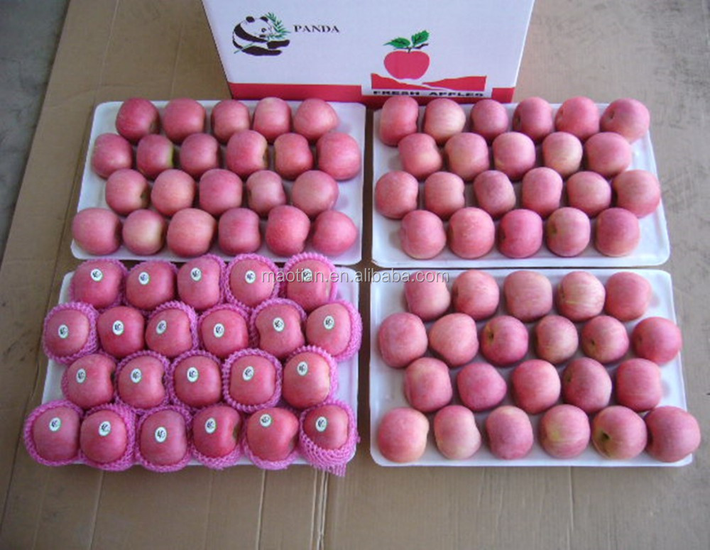 Common Cultivation Type best price fuji apple