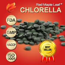 Chinese Best Slim 1 Day Diet Green Sea Algae Chlorella 250mg Pills