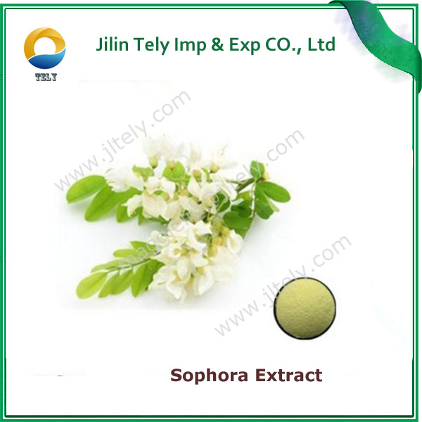Hot sale Factory Price sophora japonica flower extract