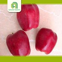 sugar coated apples with great price
