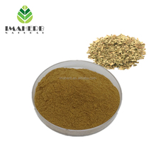 Best Sell Nature yerba mate extract best price