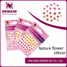 Newair small dry flower nail art stickers for nail decorations